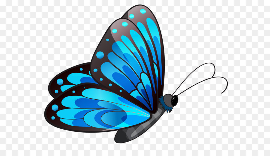 butterfly clip art transparent blue butterfly png clipart png rh kisspng com free clip art of butterflies and flowers free clipart of butterfly