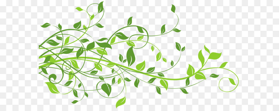 Plant Illustration Vector