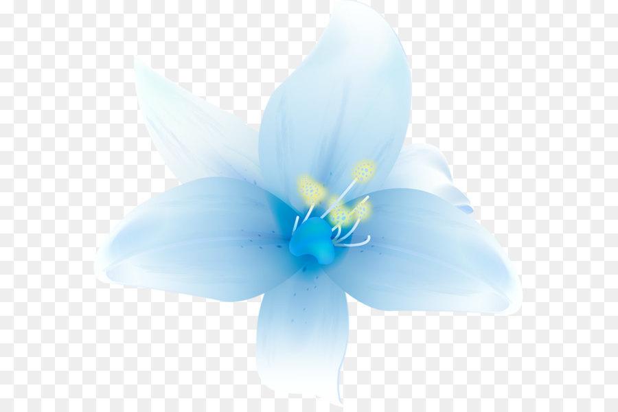 Petal blue flower graphics wallpaper large white lilium clipart petal blue flower graphics wallpaper large white lilium clipart mightylinksfo
