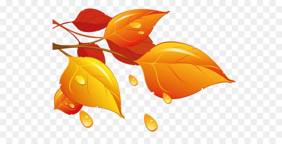 autumn leaf color clip art transparent autumn leaves png clipart rh kisspng com clip art autumn flowers in pitchers clip art autumn leaves border branch