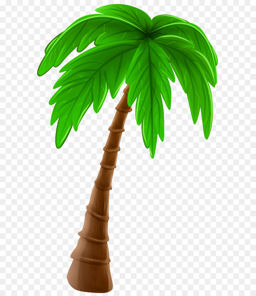 Arecaceae Cartoon Tree Clip Art