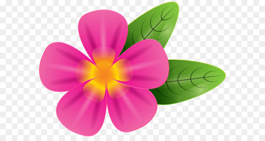 frangipani stock photography clip art pink tropic flower png clip rh kisspng com pink plumeria clipart plumeria flower clipart
