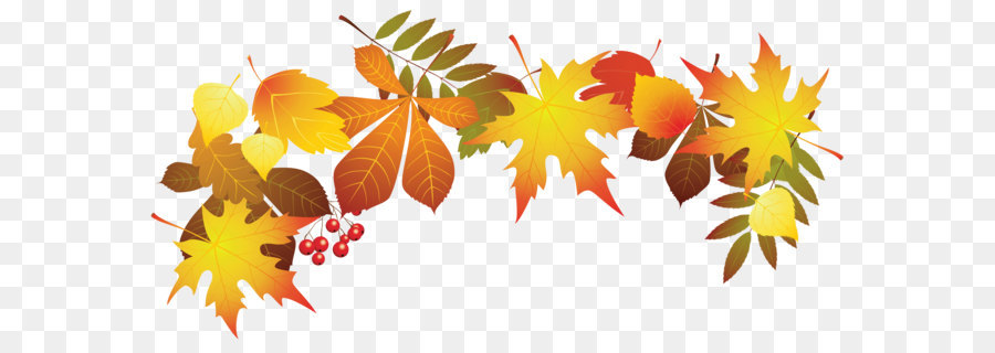 autumn leaf color clip art transparent autumn leaves decoration