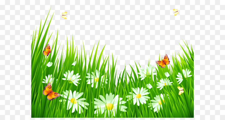 Flower clip art grass with white flowers png clipart png download flower clip art grass with white flowers png clipart mightylinksfo
