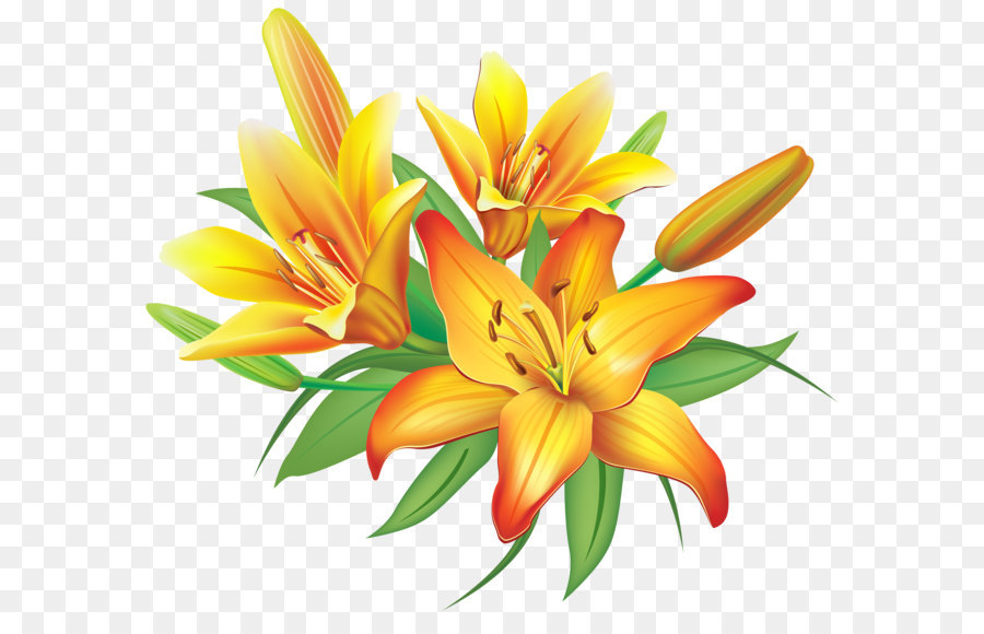 Flower yellow clip art yellow lilies flowers decoration png flower yellow clip art yellow lilies flowers decoration png clipart image mightylinksfo