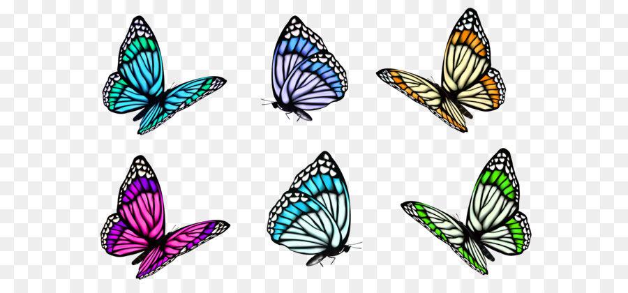 Full Color Decorative Butterfly Illustrations Clip Art Transparent