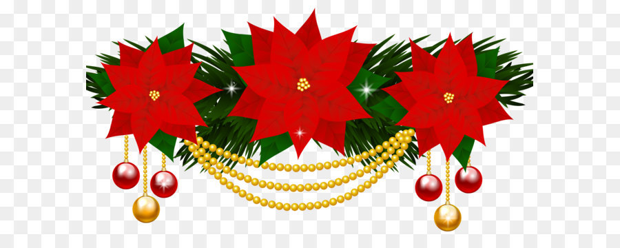 poinsettia flower christmas clip art poinsettias decoration png clipart image