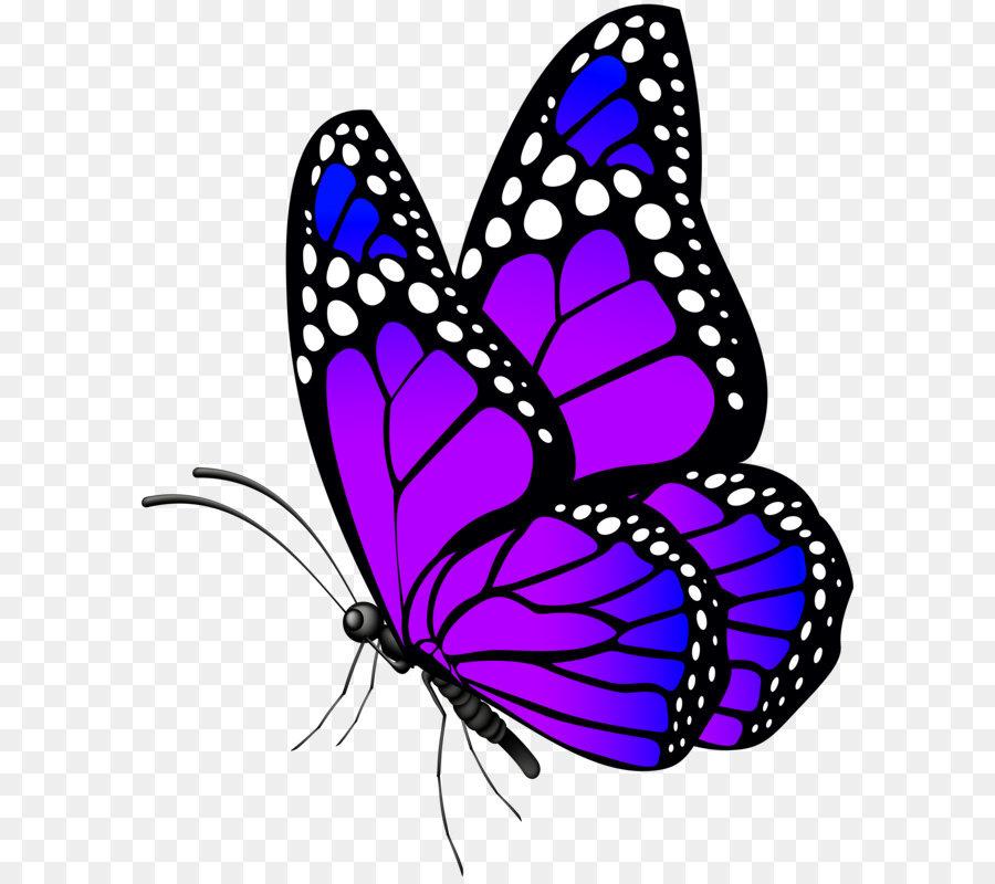 butterfly clip art butterfly purple png clip art image