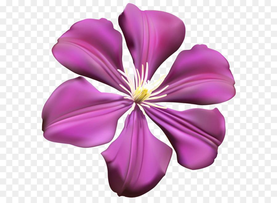 Flower transparent. Pink cartoon png download