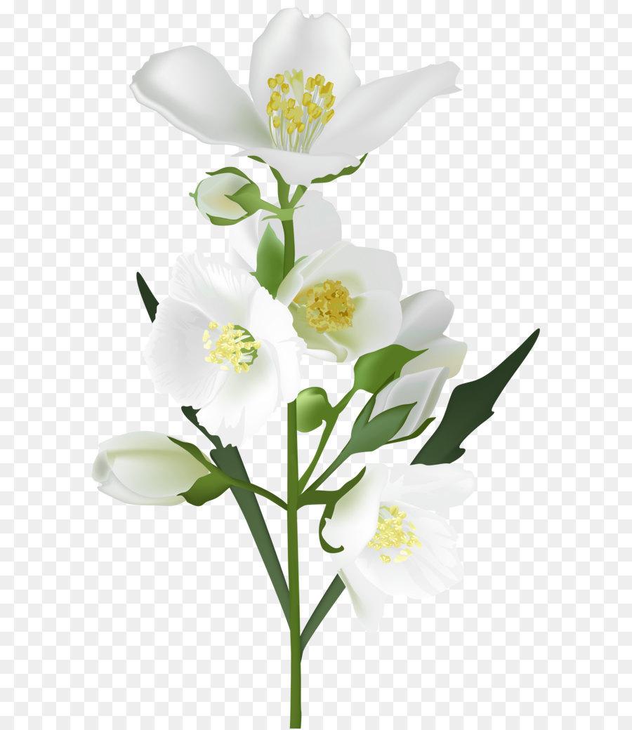 Flower white clip art white flower png clip art image png download flower white clip art white flower png clip art image mightylinksfo