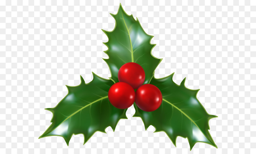Mistletoe Christmas Common Holly Clip Art Christmas