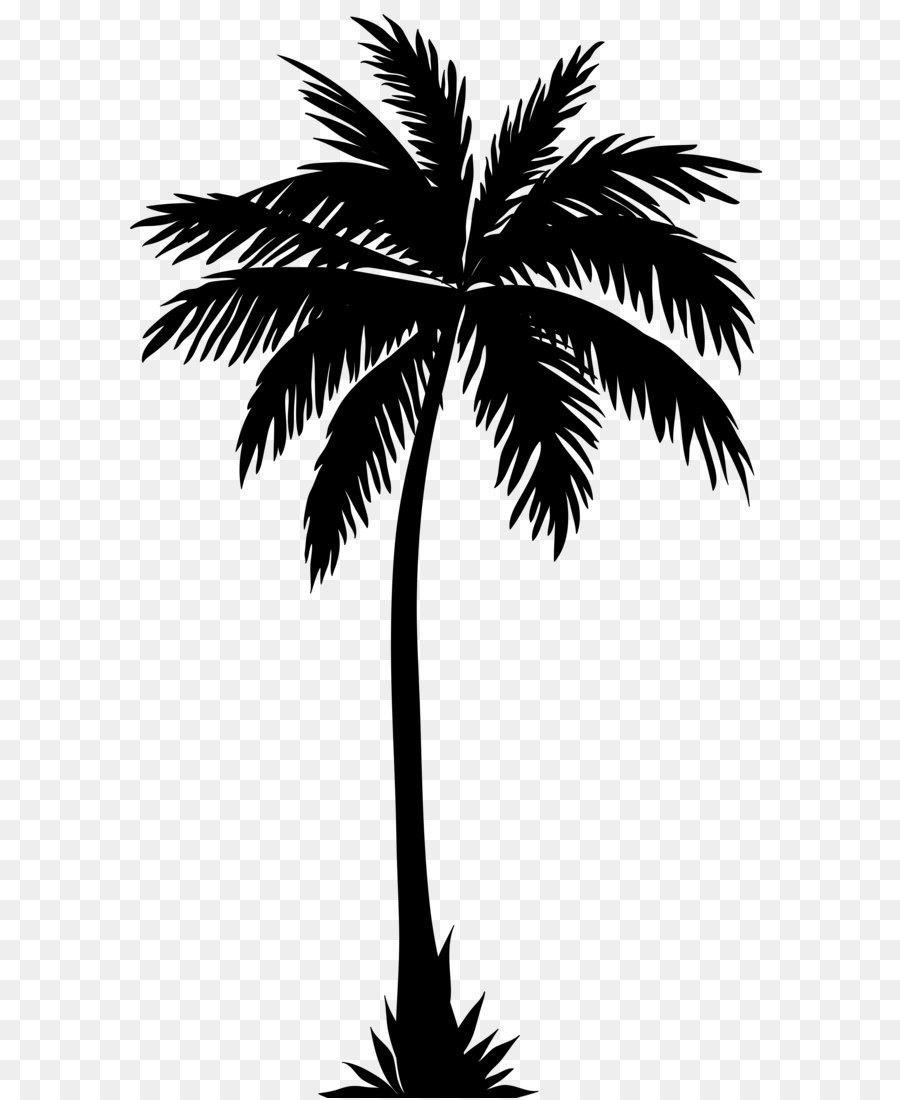 Arecaceae silhouette clip art palm tree silhouette png clip art image