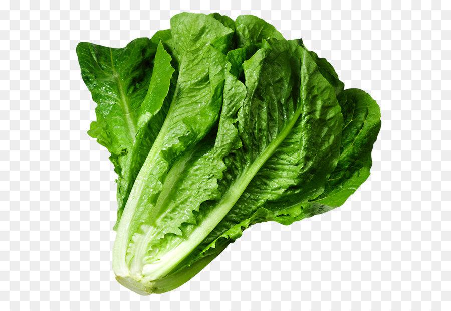 lettuce sandwich wrap iceberg lettuce clip art lettuce png picture rh kisspng com iceberg lettuce clipart lettuce clip art black and white