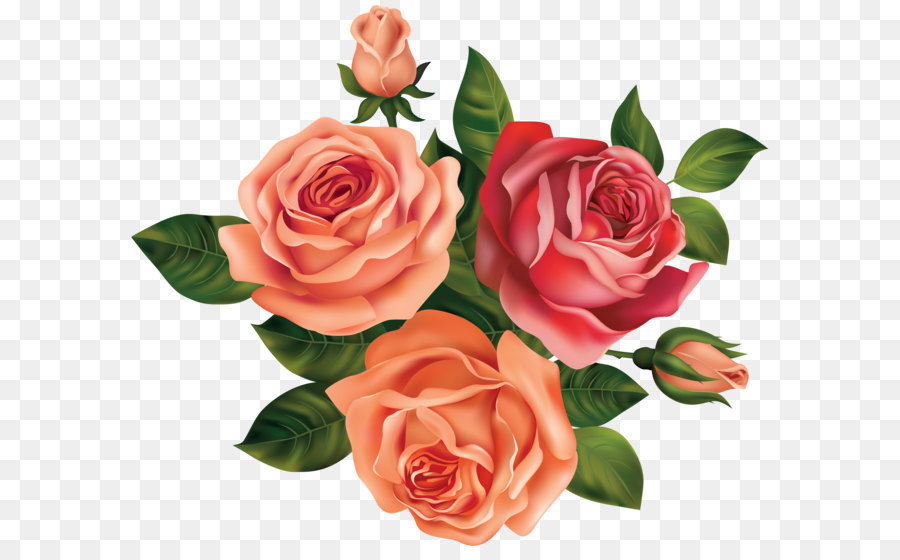 Rose Flower Clip Art Beautiful Roses Clipart Image Png Download