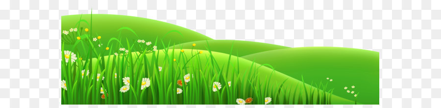 meadow euclidean vector clip art - transparent flowers and grass png