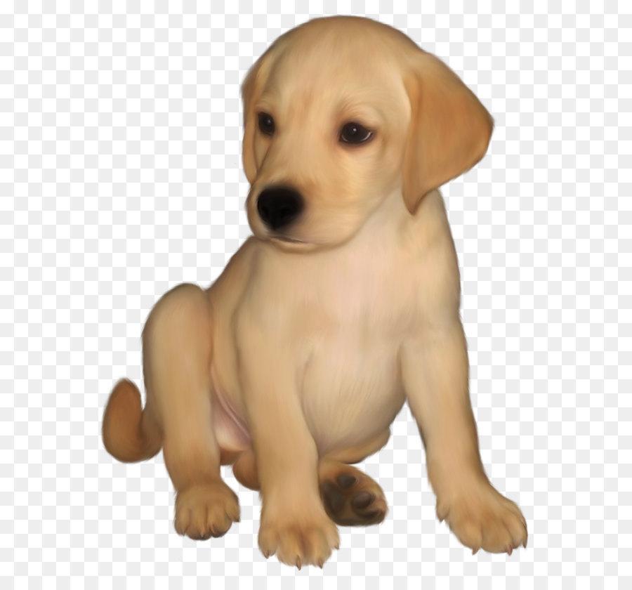 Labrador Retriever Golden Retriever Puppy Clip art ...