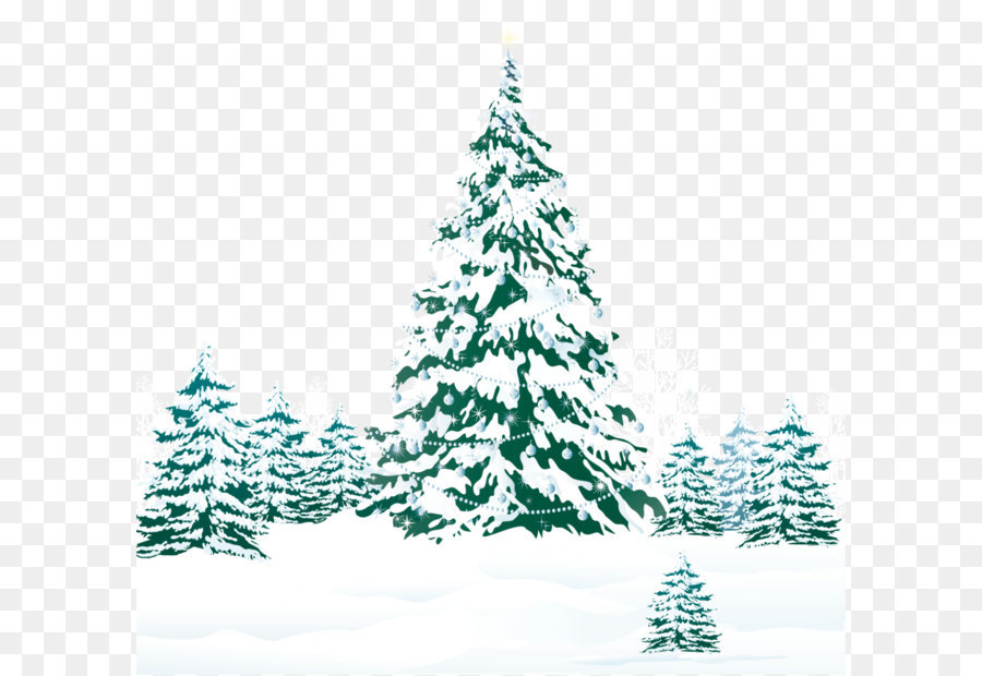 Christmas Tree Pine Snow Snowy Winter Ground With Trees Png