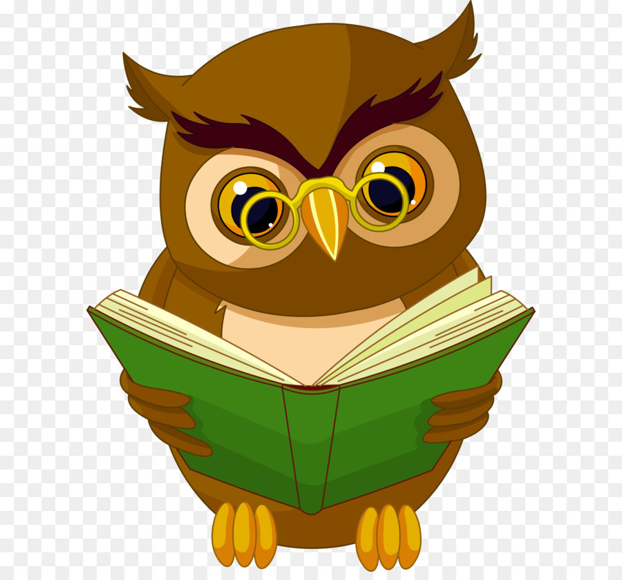 owl animated cartoon drawing animation transparent owl owl clipart to print free owl clipart to print free
