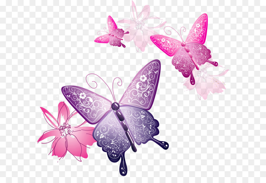 Butterfly Clip Art Transparent Butterfly Decorative Clipart Png