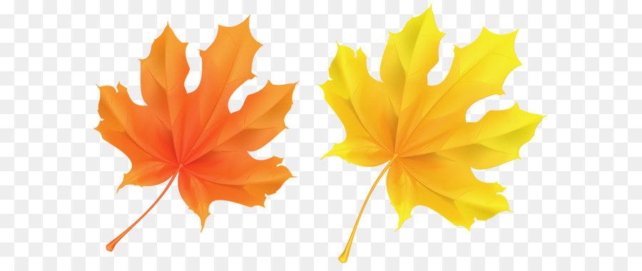 Autumn leaf color orange clip art transparent yellow and orange autumn leaf color orange clip art transparent yellow and orange leaves picture mightylinksfo