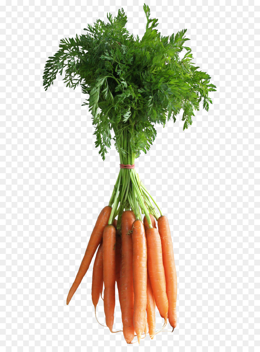 Carrot Food Png Download 1368 2544 Free Transparent Carrot Png