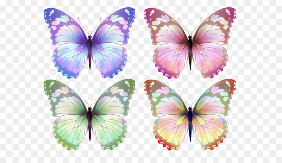 Butterfly Clip Art Transparent Butterfly Png Clipart Png Download
