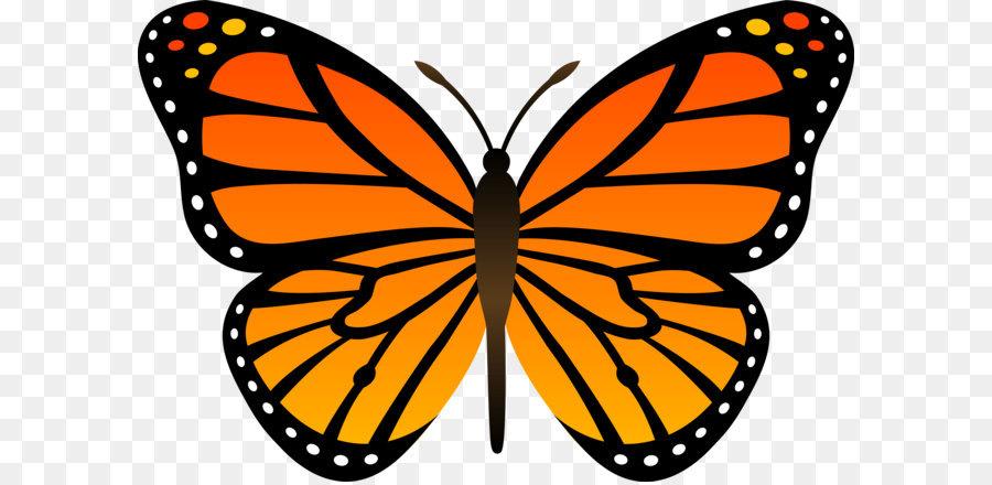 butterfly cartoon clip art orange butterfly png image clip art caterpillar to butterfly clip art caterpillar name tags