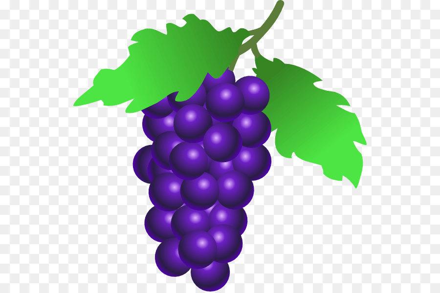 De raisin, extrait de pépins de pamplemousse raisin png image.