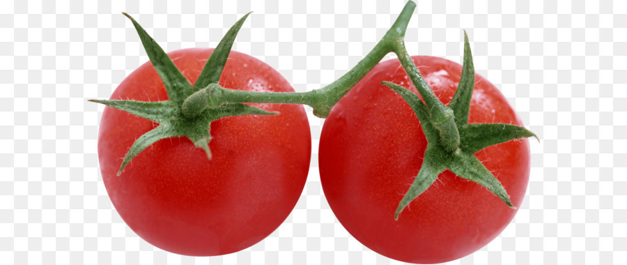 Salsa Rotten Tomatoes Pizza Food Tomato Png Image
