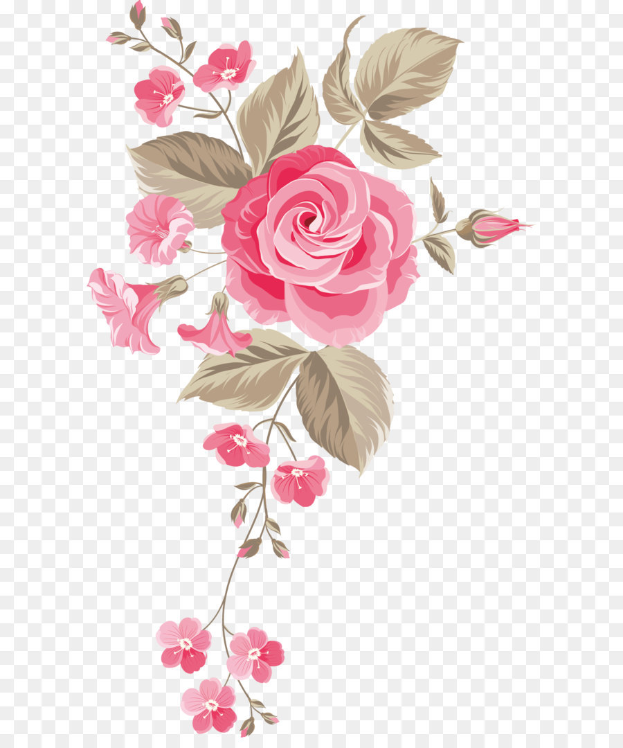 Garden Roses Centifolia Roses Floral Design Cut Flowers Flower