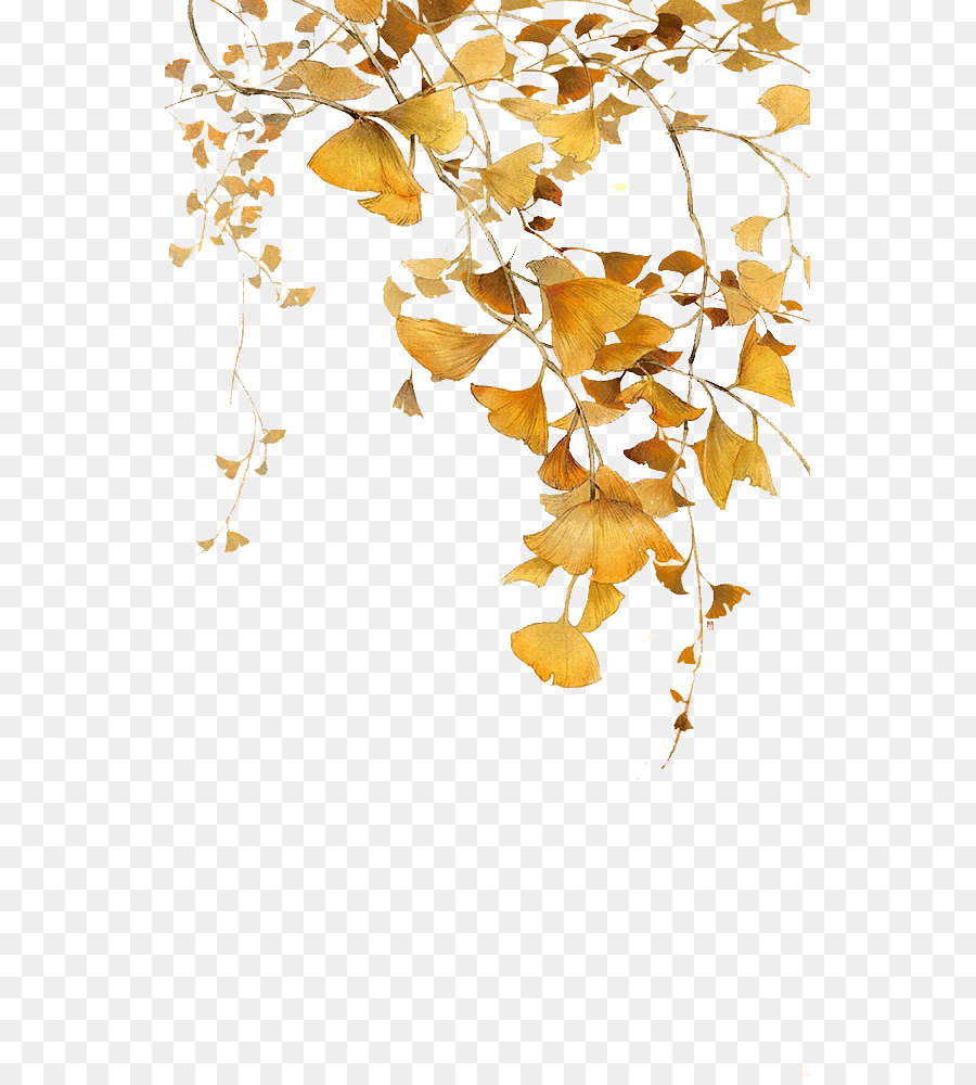 leaf ginkgo biloba icon autumn yellow ginkgo leaves png download