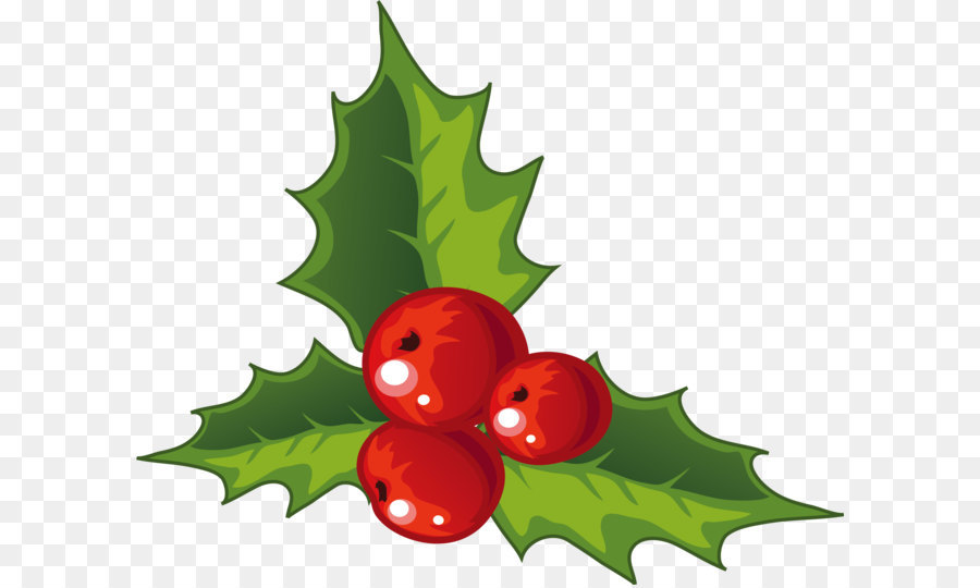 Holly Christmas decoration - Holly decorations for Christmas - Holly Christmas Decoration - Holly Decorations For Christmas Png