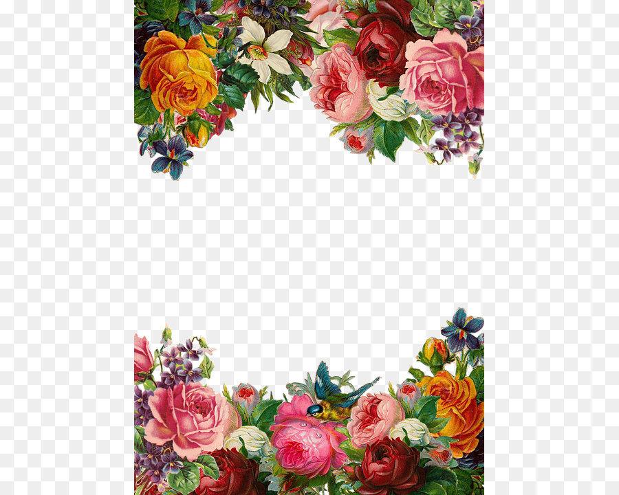 Flower Pixabay Clip Art Beautiful Flowers Border 509 720