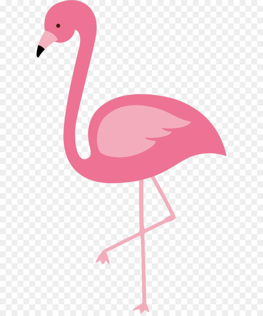 Flamingos Bird Euclidean Vector Red Flamingo Vector 1124