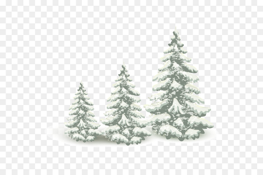 falling snow pine tree png download 1240 1143 free transparent
