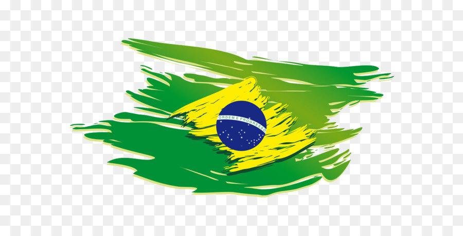 Brazil Flag Rio
