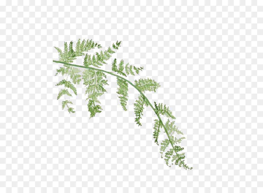 Hoja de la pintura a la Acuarela - Acuarela hojas Formatos De ...