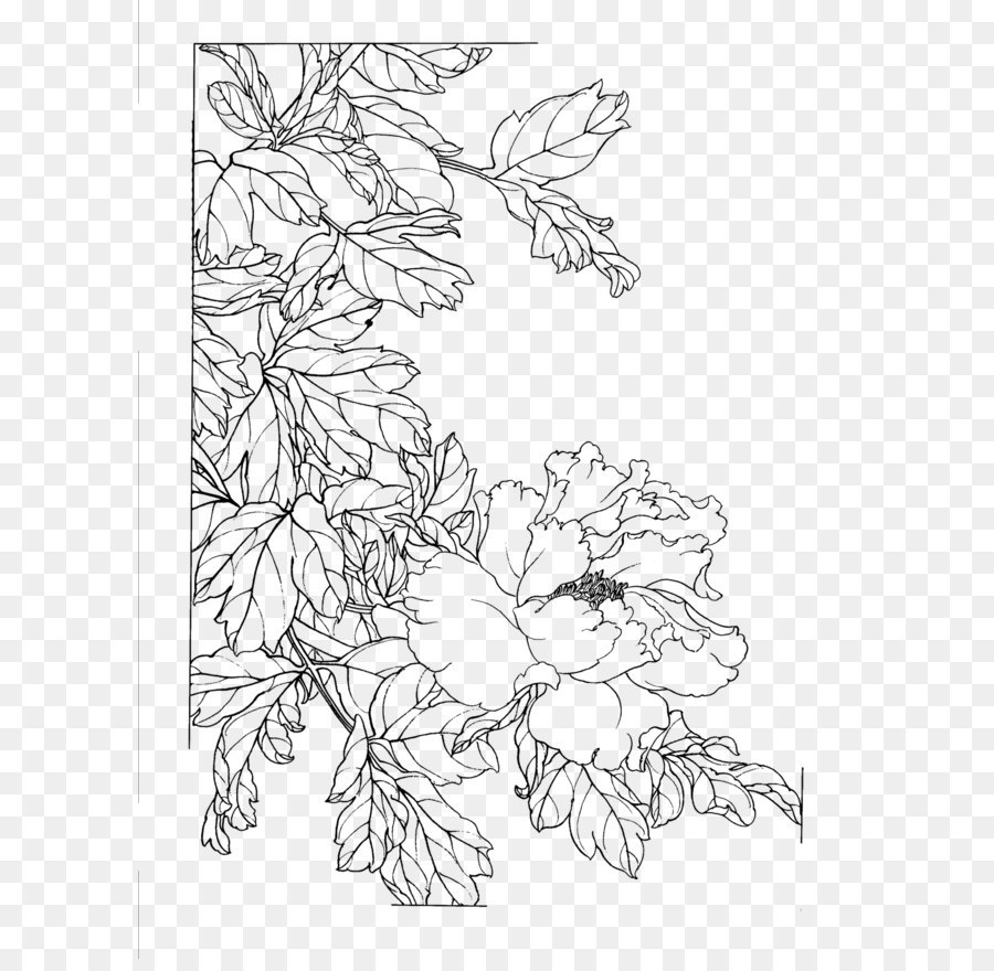 Chinese Flower Line Drawing : Gongbi chinese painting flower sketch peony