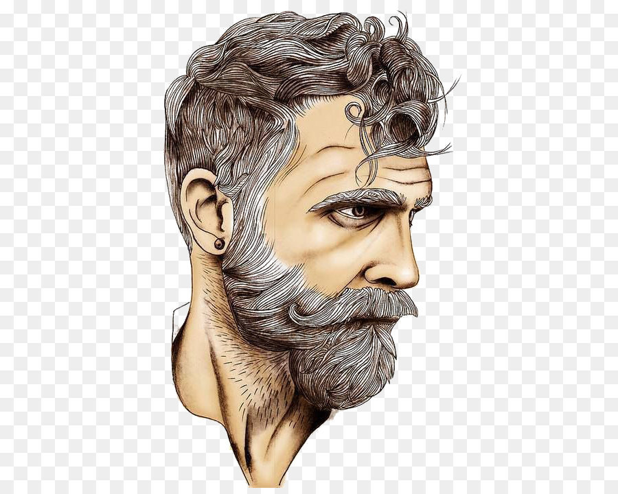 Beard Drawing Art Sketch - White Bearded Man Png Download - 527*711 - Free Transparent Forehead ...