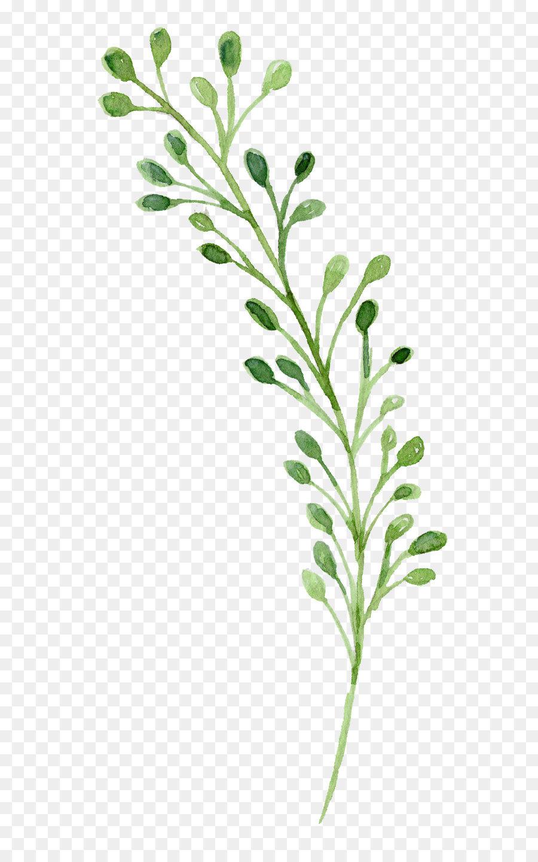 watercolor painting green watercolor flowers 16043512