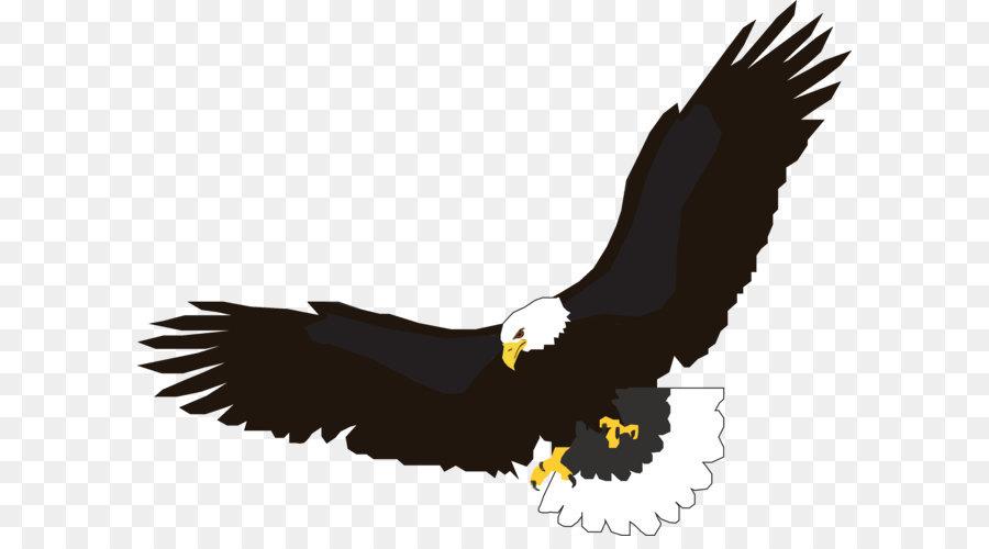 Flight Eagle Clip art - flying eagle PNG image, free download png ...