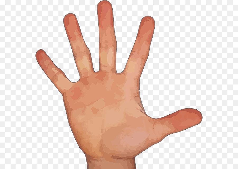 Index Finger Hand Little Finger Thumb Five Fingers Png Image Png