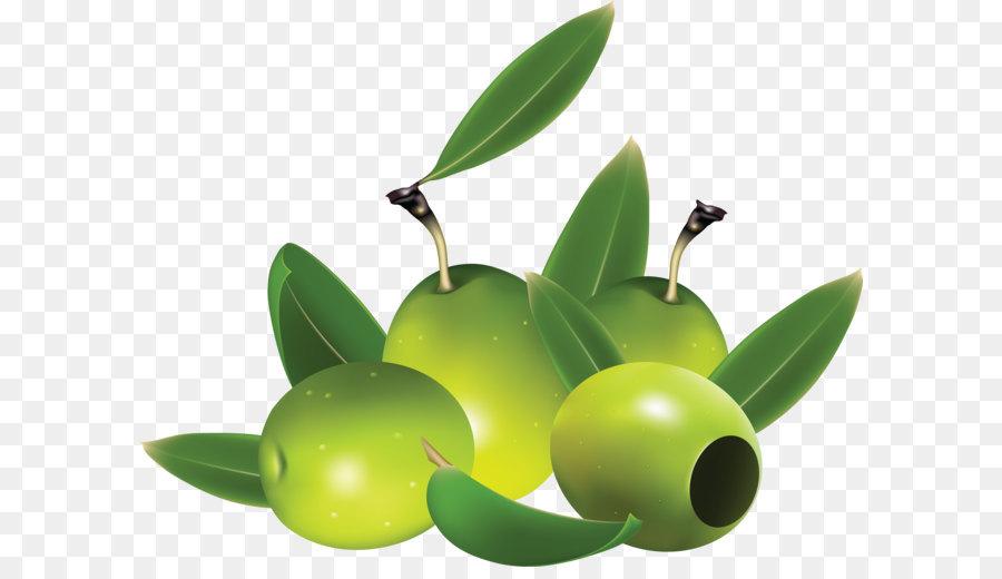 olive euclidean vector clip art green olives png png download rh kisspng com olive clipart png olive clipart images