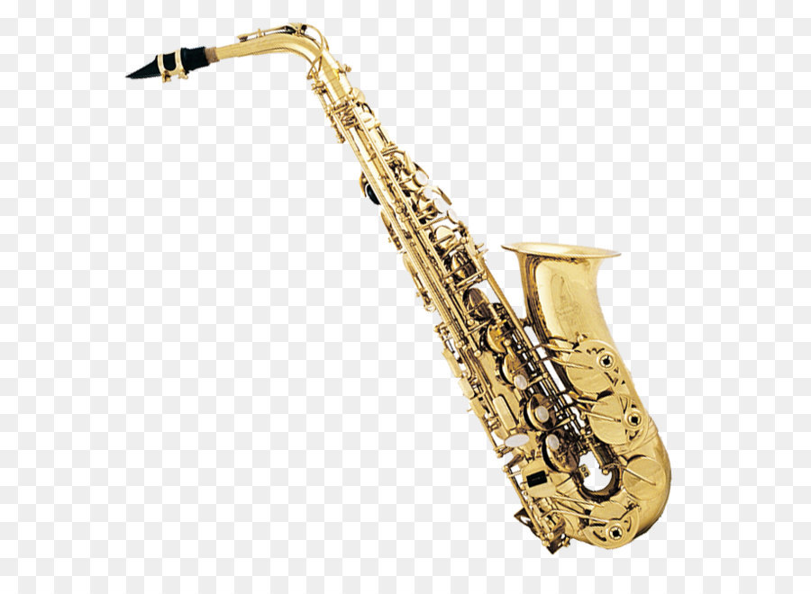 brass instrument Brass instruments are also known as labrosones or lip-vibrated instruments the pitch of brass instruments is affected by the player's lip vibration, or embouchure, and the airflow.