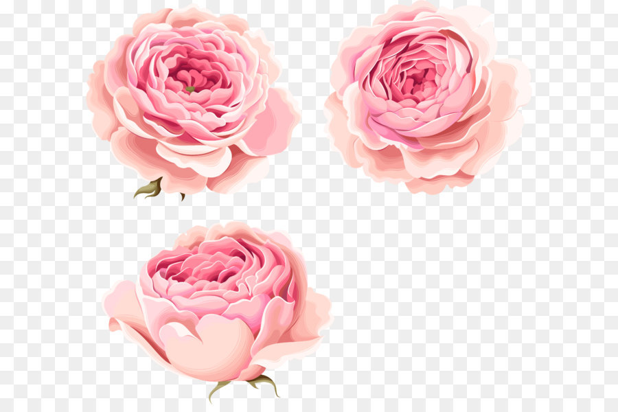 Hand painted beautiful pink peony flowers png download 12541136 hand painted beautiful pink peony flowers mightylinksfo