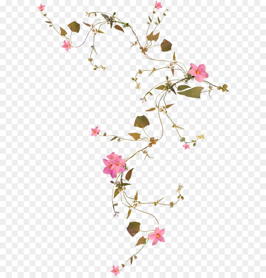 Flower Vine Png Download 658948 Free Transparent Pink Png Download