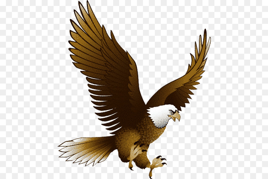 Eagle Clip art - Eagle PNG image with transparency, free download ...