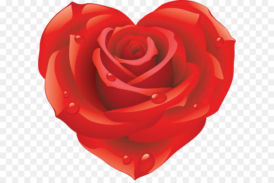 Rose Wallpaper Rose Png Bild Kostenlos Bild Herunterladen Png
