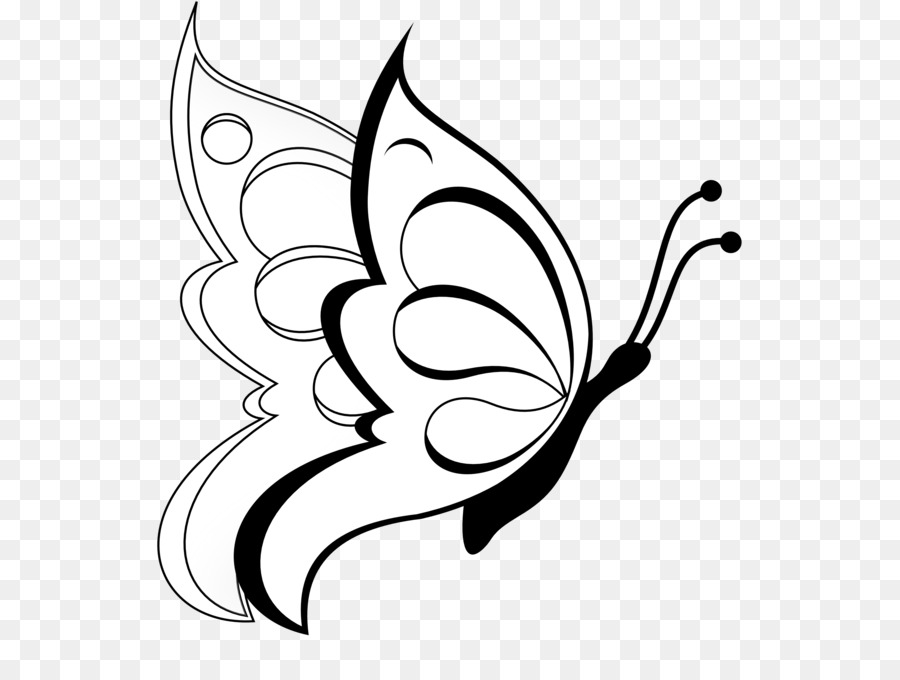 Butterfly drawing pencil sketch butterfly clip art
