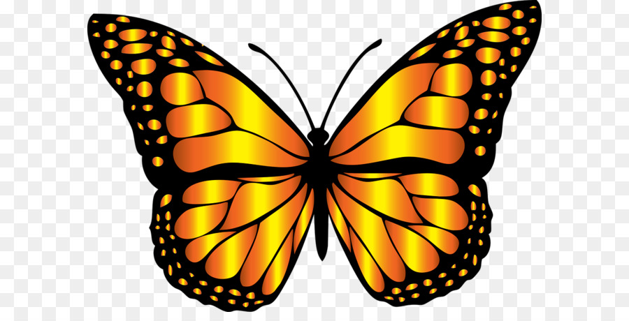 monarch butterfly insect clip art butterfly clip art png download rh kisspng com free animated monarch butterfly clipart monarch butterfly clipart free